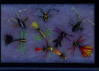Flies by CFFA member Paul Beaudreau _10